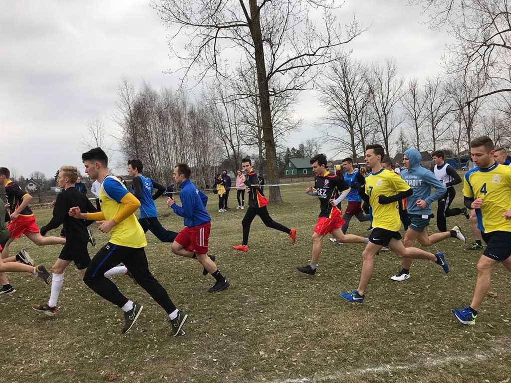 Ćwierćfinały wojewódzkie w drużynowych biegach przełajowych
